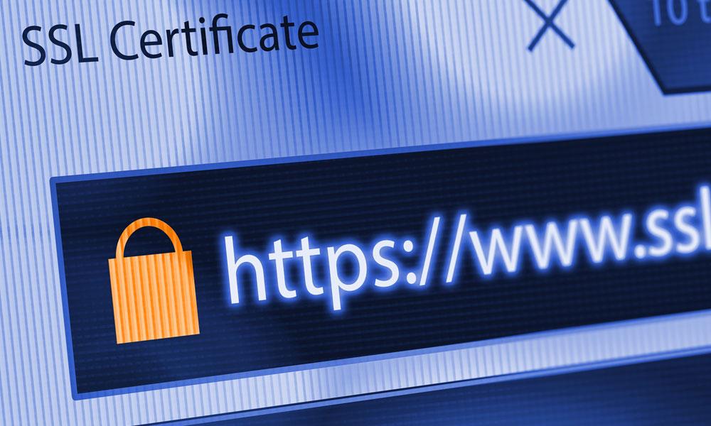 Website Design Cumbria the importance of having and SSL certificate blog image